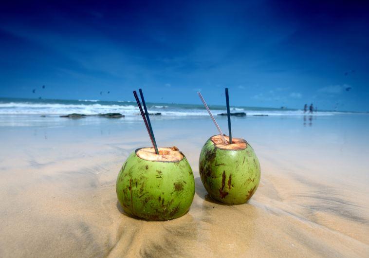 vacation tropics
