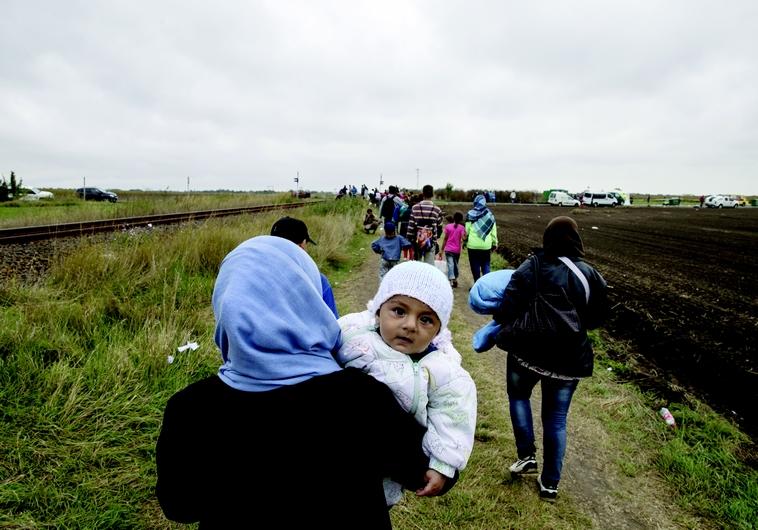 Réfugiés sur les routes