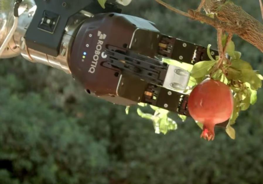 Rosh HaShanah robots