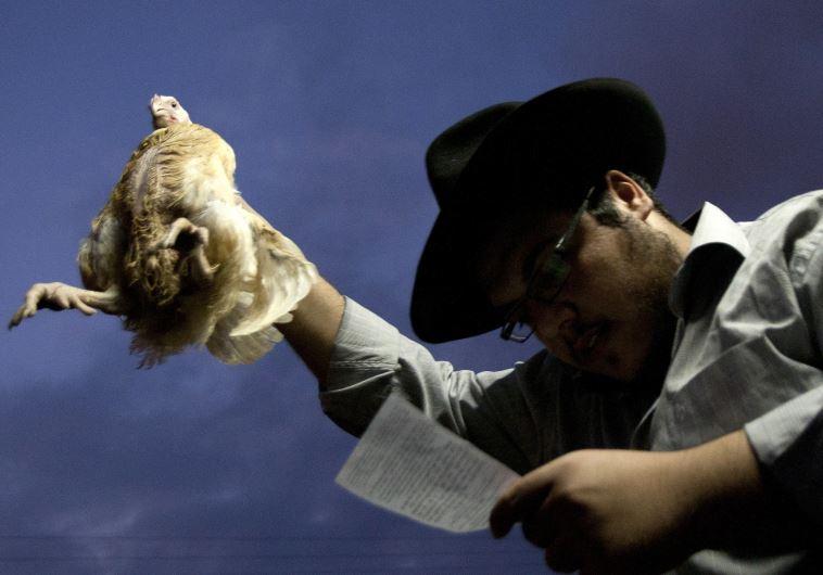 kapparot chicken