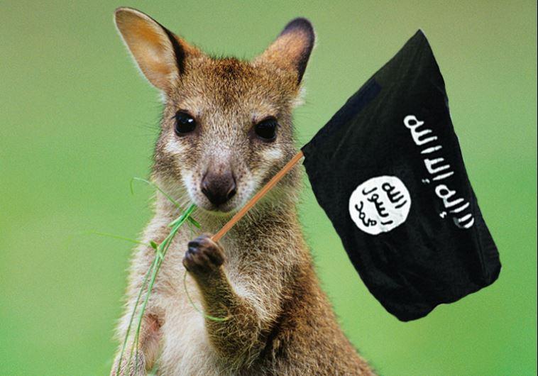 ISIS kangaroo