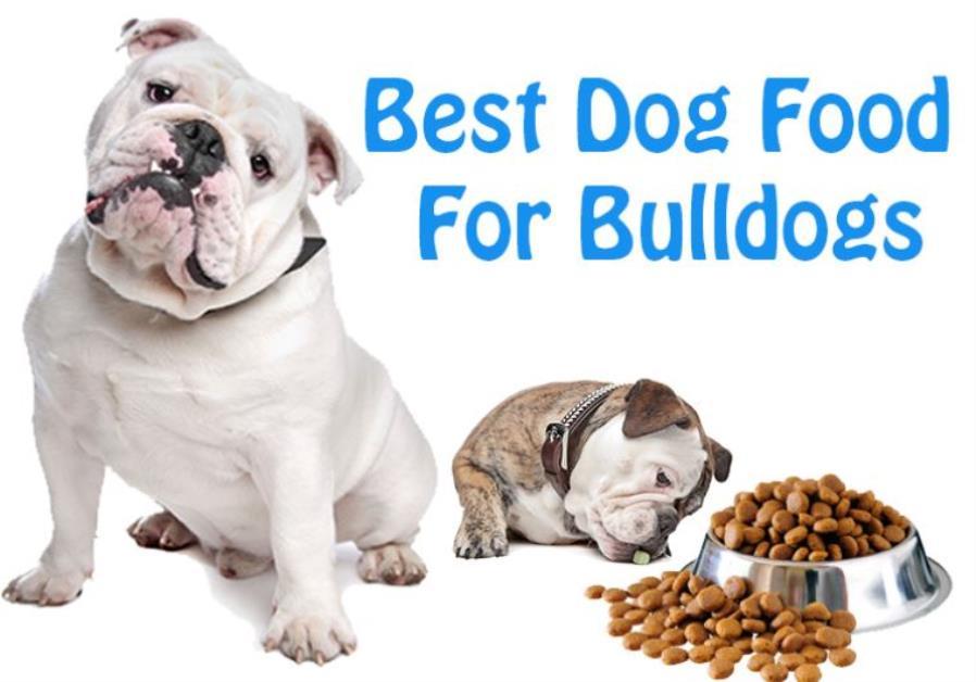 Best Non Allergenic Dog Food