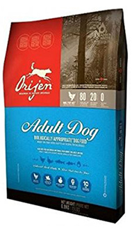 The Best Dog Food For Pitbull: Top Dog Foods For You To Try
