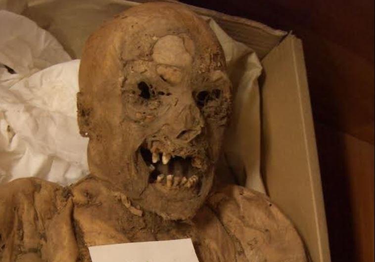 sciene mummy
