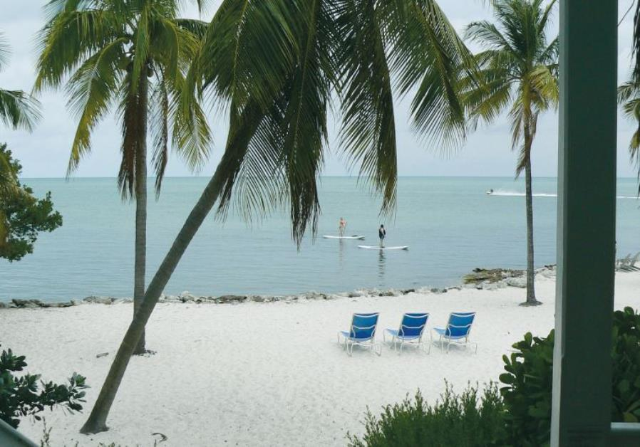 WHAT, ME WORRY? Our back-porch view in the Florida Keys.