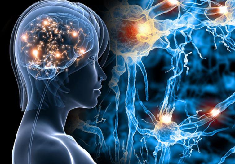 Increase Mental Focus + Memory + Energy