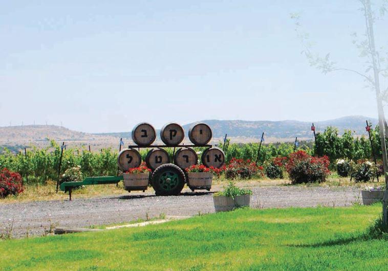 Ortal winery