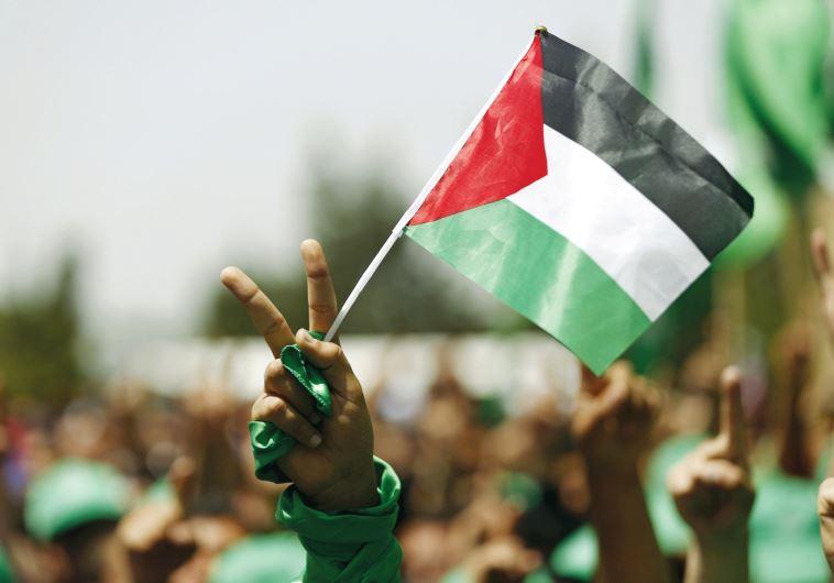 Pro Hamas student