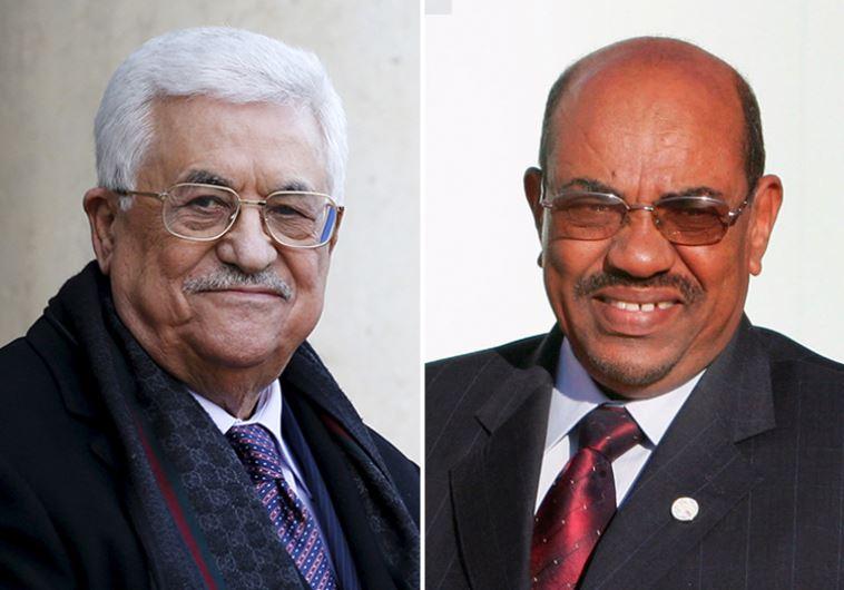 Abbas Al-Bashir