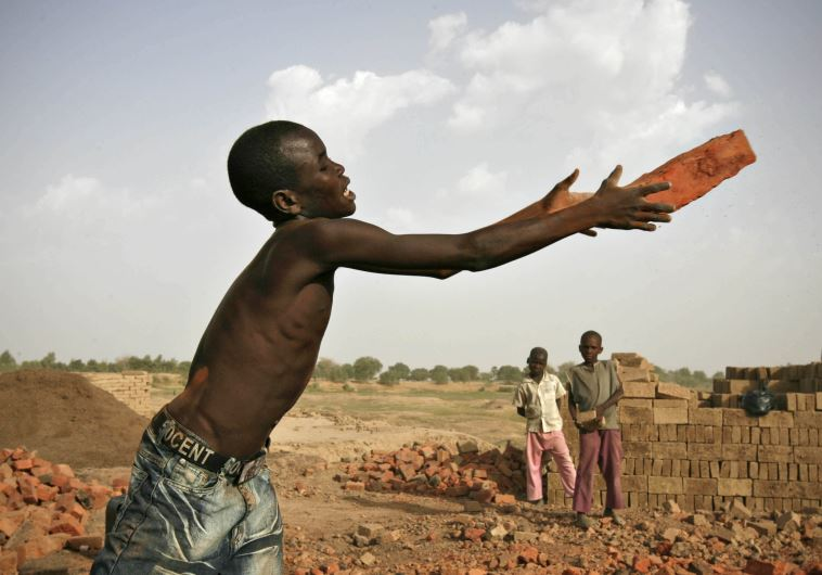 A boy catches a brick at a riverside factory in Chad's capital N'Djamena