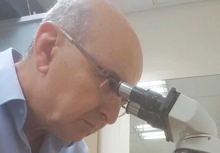 Dr. Ilya Barr