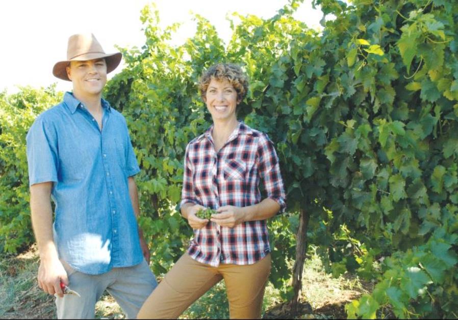 Israel Winery