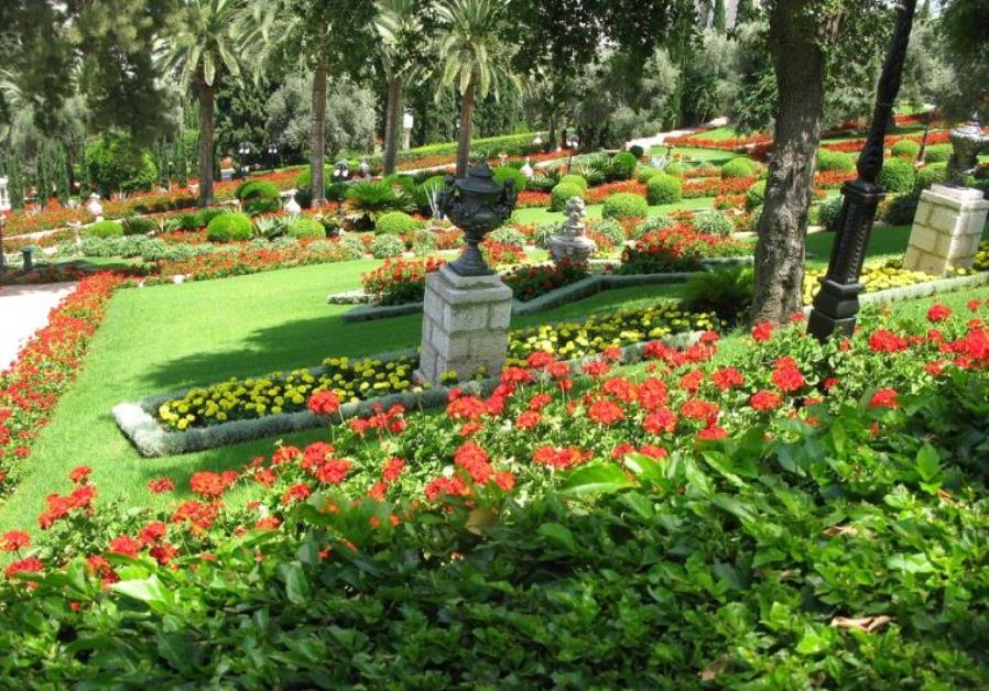 A fragrant garden