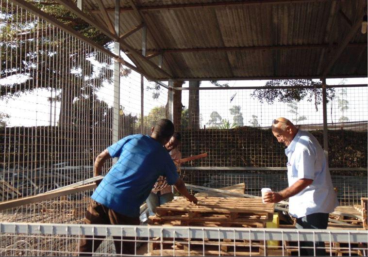 Israeli horticulture center in Rwanda