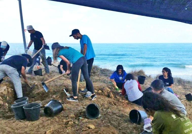 beach archeology