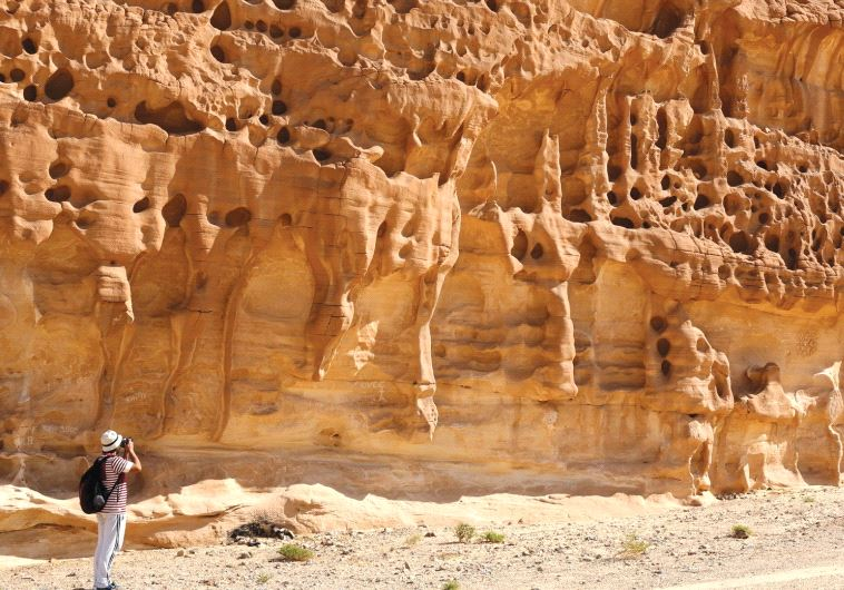 VACATION SPOT? A hiker takes a photo in the White Canyon area in South Sinai, Egypt, last year.