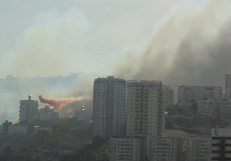 Planes fight fires in Haifa. (Eilon Lester, Ministry of Environment)