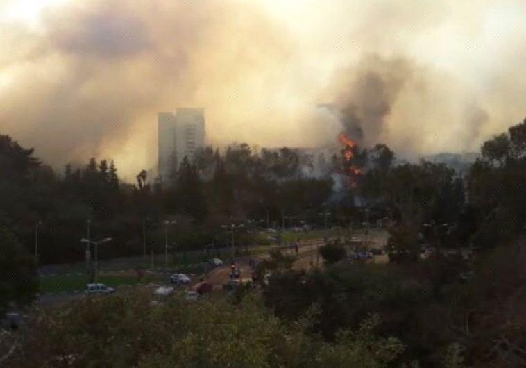 Fires Rage in Haifa (Courtesy Israeli Police)