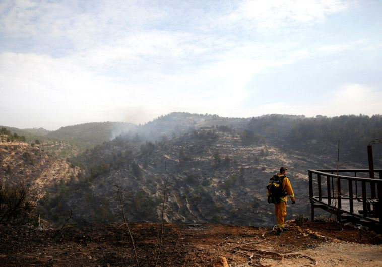 A firefighter works during a wildfire, near the communal settlement of Nataf, close to Jerusalem November 23, 2016. (REUTERS/Ronen Zvulun)