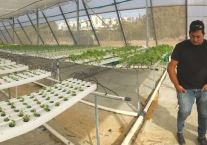 Hope for a hungry planet - Hi tech news - Jerusalem Post