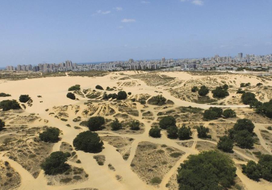 Les dunes d'Ashdod