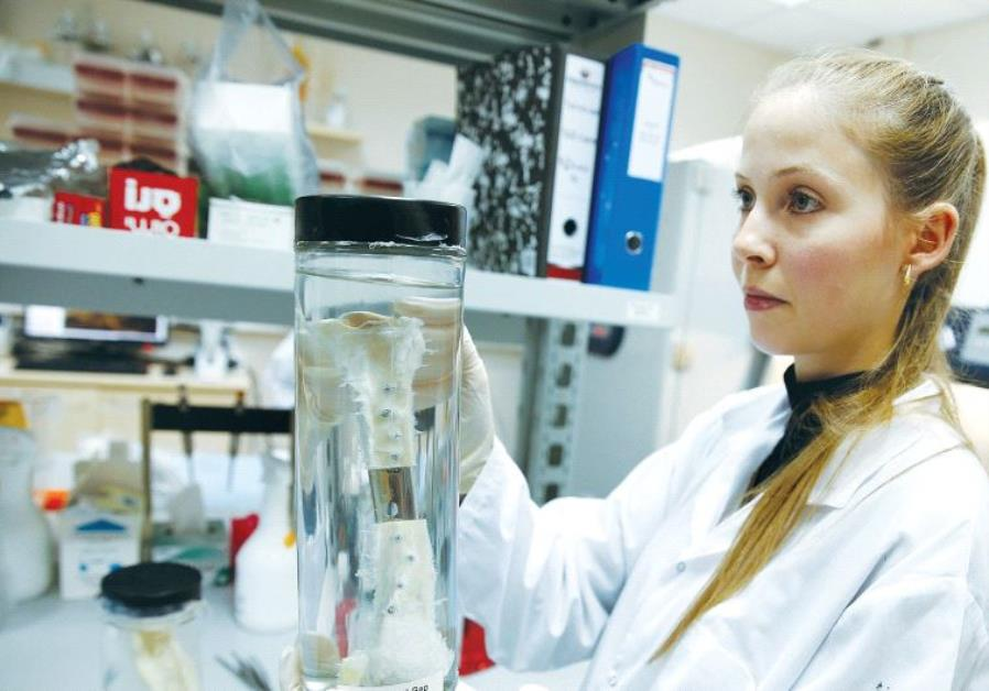 A RESEARCHER in the lab of a biotech firm in Haifa holds a vial containing a bone graft earlier this