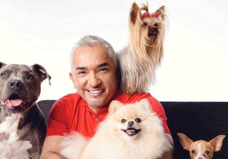 PUP CULTURE: Famed TV show host and 'dog whisperer' Cesar Millan