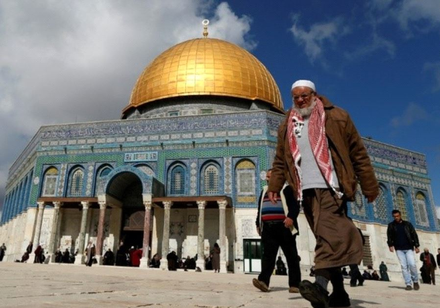 Amnesty tries banning Jewish history