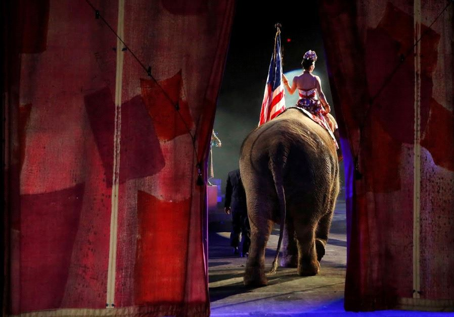 One of Ringling Bros. and Barnum & Bailey Circus's elephants enters the arena for its final show in
