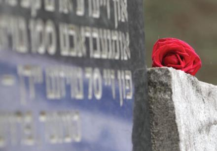 A RED ROSE is pictured during the March of the Living to honor Holocaust victims in Paneriai, near V