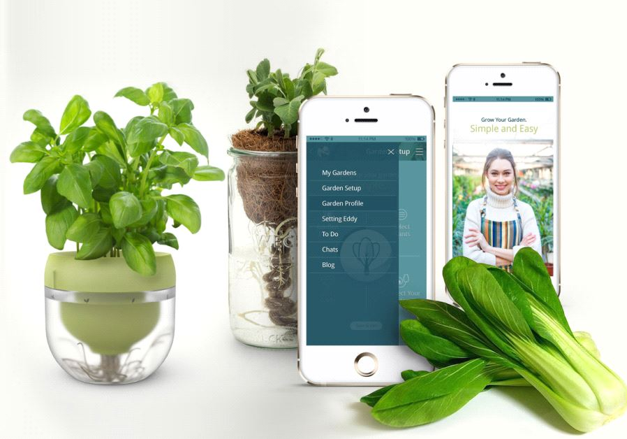Cultiver de la nourriture toute l'année avec le système hydroponique