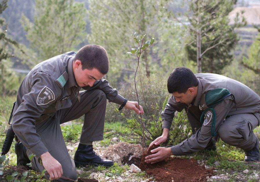 BORDER POLICEMEN plant trees for Tu Bishvat in the Arazim Valley near Jerusalem in 2013.