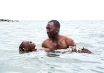 The film 'Moonlight'