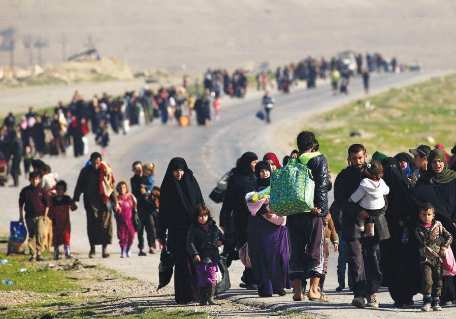 Displaced Iraqi