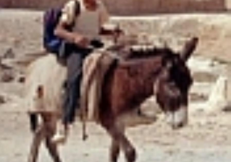 beduin child riding donkey 88 ap