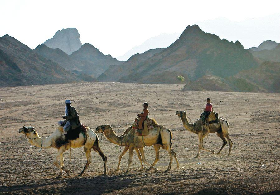 Sinai Peninsula in 2006
