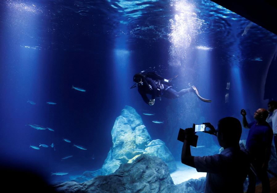 biblical zoo aquarium