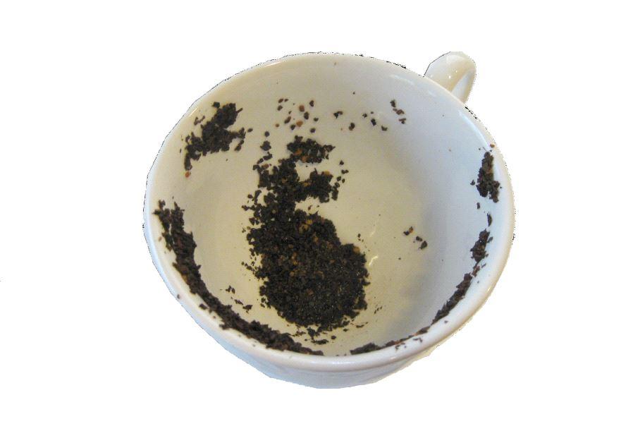 tea-leaf reading