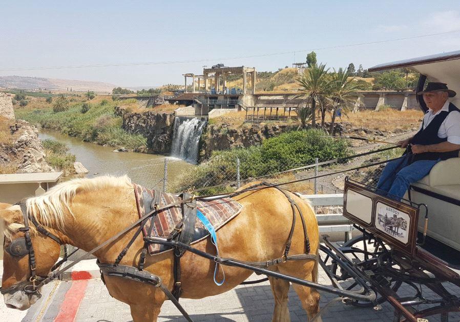 A HORSE-DRAWN carriage takes visitors through Naharayim Park.