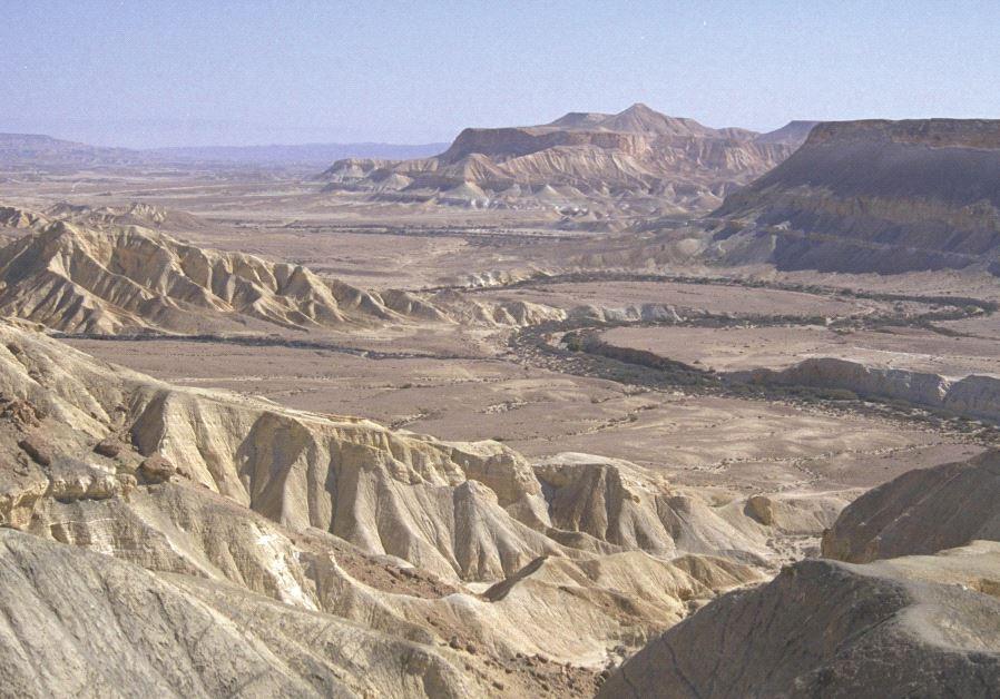 The Zin Desert