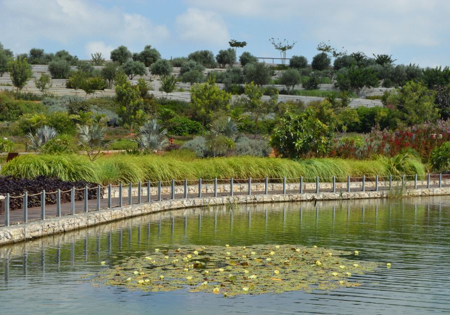 Ariel Sharon Park, built on the site of a former landfill once dubbed 'Trash Mountain,' is an outstanding example of Israel's cutting-edge approach to green solutions (Credit: JAMES S. GALFUND)