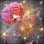 parkinsons brain 88