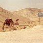 Water in the Judean Desert