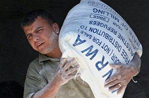UNRWA in gaza 248 88